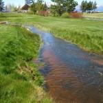 Edgewood Creek will be restored.