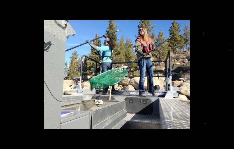 Scientists zapping lake tahoe aquatic life lake tahoe for Nevada game and fish