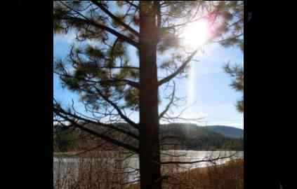 New Year's Day guided hike at Spooner