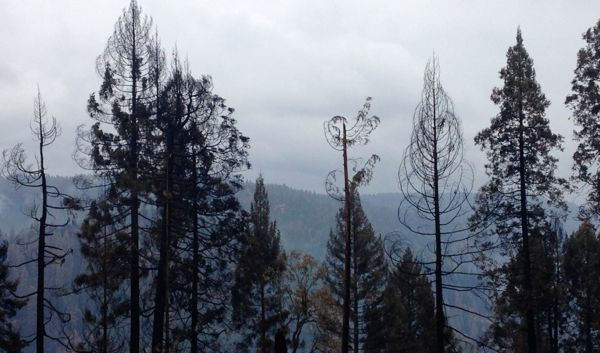 Full containment of King Fire expected Sat.