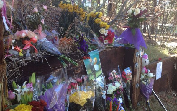 Names of victims in fatal S. Tahoe crash released