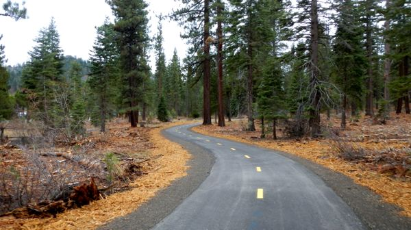 Path puts users in woods, off major Tahoe road