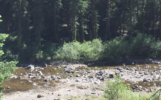 Centennial Dam project could affect 3 Sierra rivers