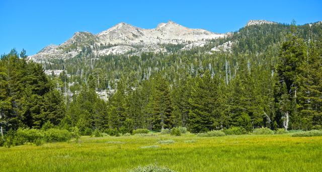 Nature becomes a prescription for healthy living