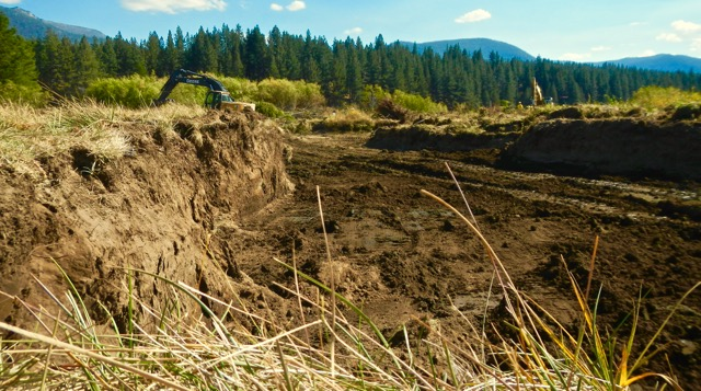 Dirt is excavated to subgrade, then the banks area revegetated, riffle gravels are added to bring the river's floor to the desired elevation. Photo/Kathryn Reed