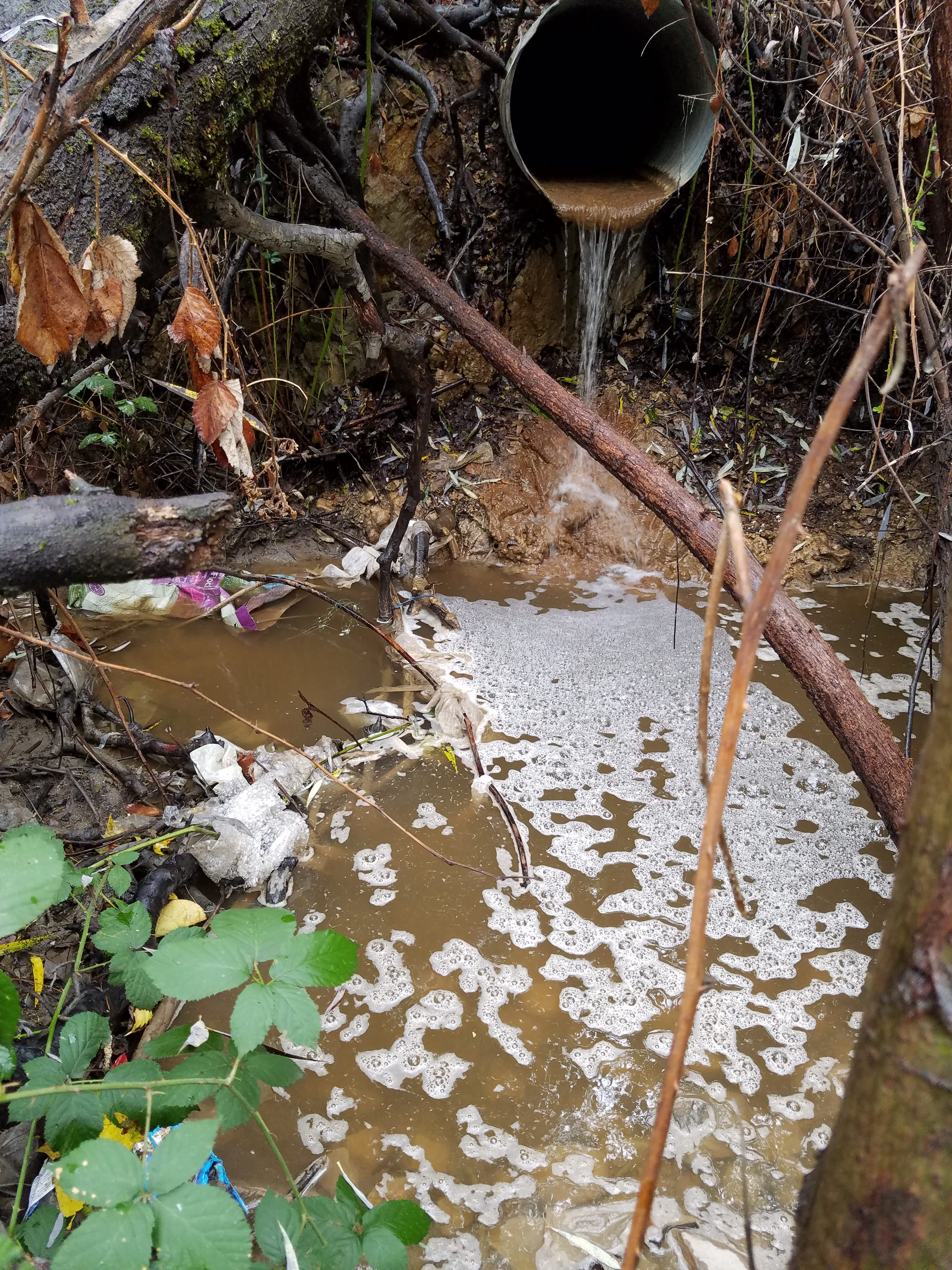 October rains brought the caustic water problem on the West Slope to the surface again. Photo/Provided