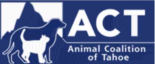 ACT helping South Shore dogs and cats