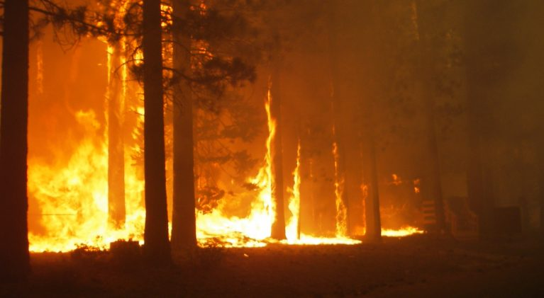 Lake Valley: Angora Fire — a helpless feeling