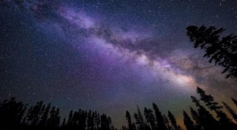 Star Guide: Tahoe pines block the light of stars
