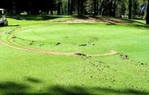 Someone doing doughnuts at the Glenbrook Golf Course tore up the greens. Photo/Provided