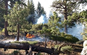 Spot fires are flaring up outside the main King Fire. Photo/Tahoe Douglas Fire