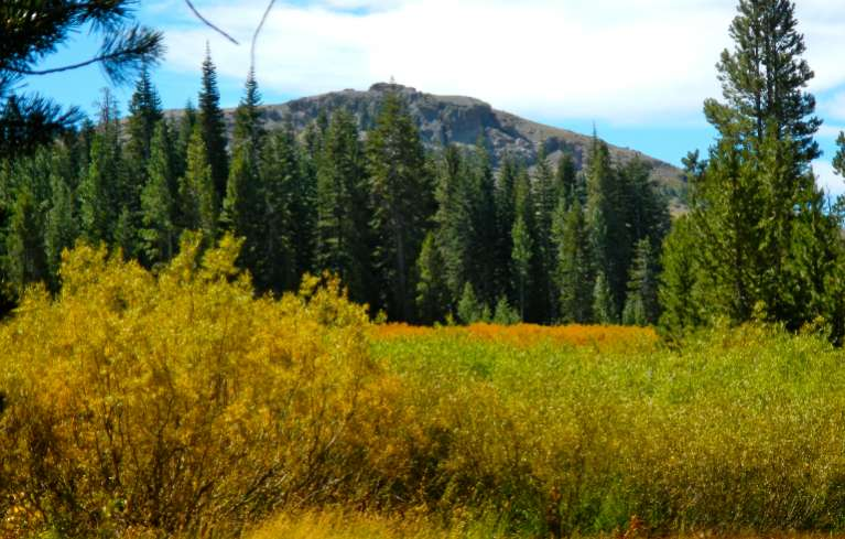 Shades of fall on Aug. 16 hiking to Raymond Lake in Alpine County. Photo/Kathryn Reed