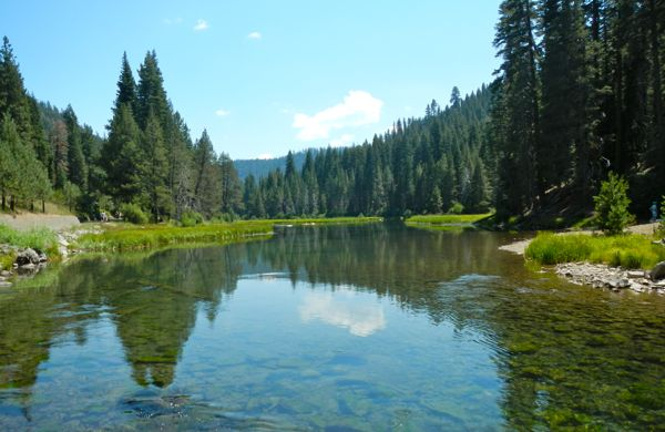 The Truckee River is calm and shallow just before the lodge.
