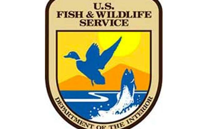 Opinion: Feds redefine endangered species protections