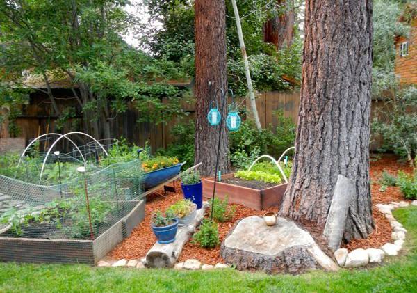 Variety of free gardening classes in Nevada