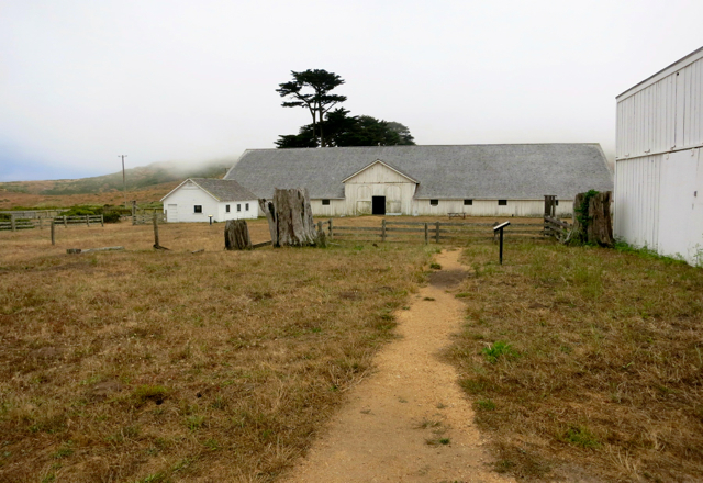 The dairy building on the Historic Pierce Point Ranch was once the center of a thriving dairy business. It remains preserved within the Tule Elk Reserve at Point Reyes National Seashore. Photo/Jessie Marchesseau