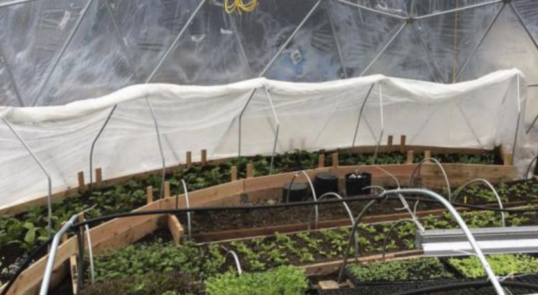 Farm conquers Truckee's harsh growing climate