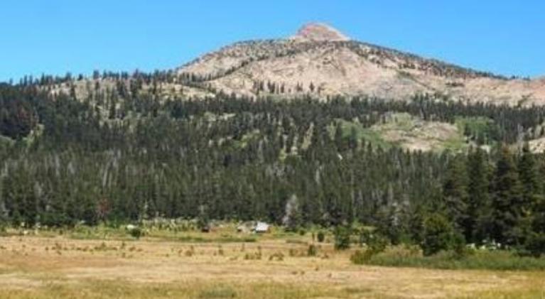 Forni Meadows now part of Eldorado Forest